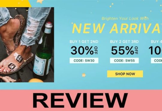 Remishoes Review 2020