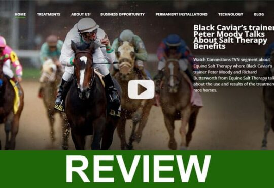 Equine Salt Therapy Review 2020