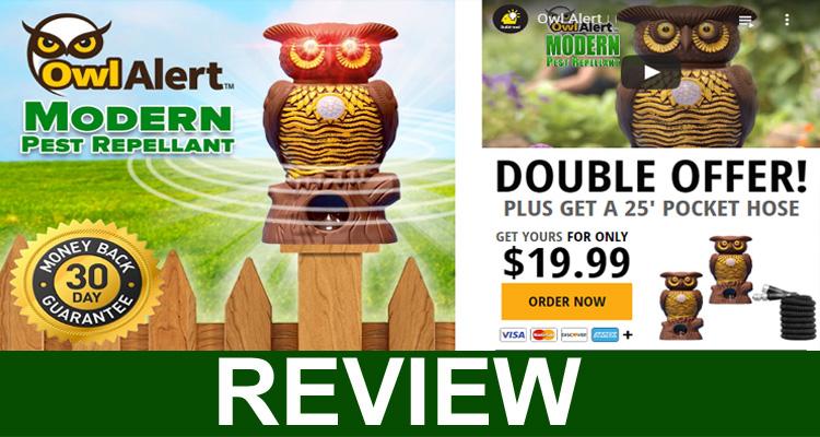 Owl Alert Review
