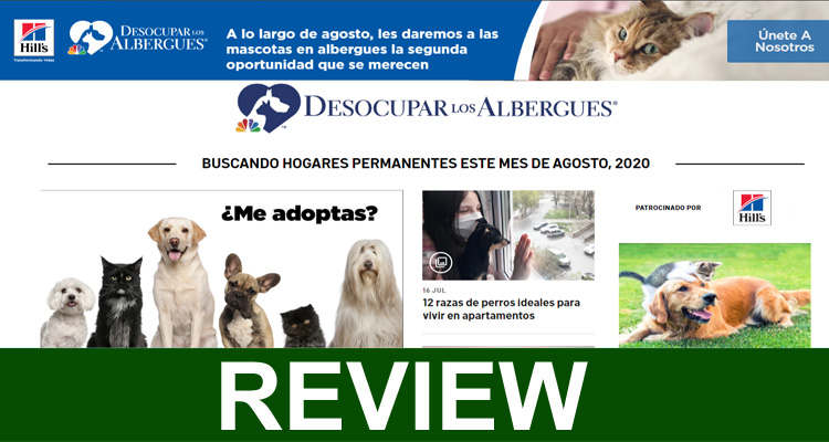 Desocuparlosalbergues com 2020 (August) Read More.