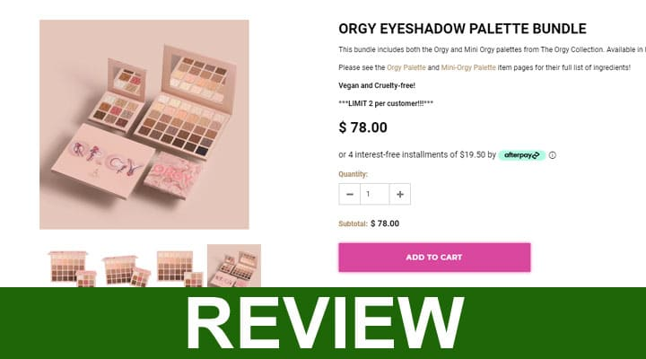 Orgy Palette Review 2020