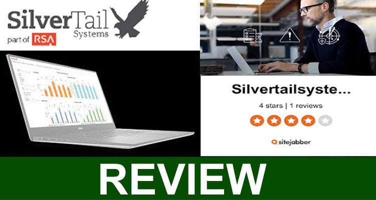 Silvertail Associates Review