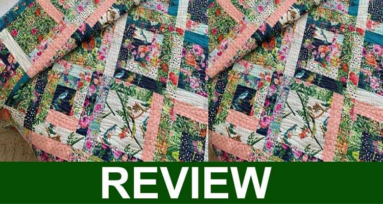 Antcozy Reviews 2020