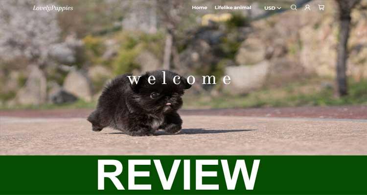Buymybestitem Reviews