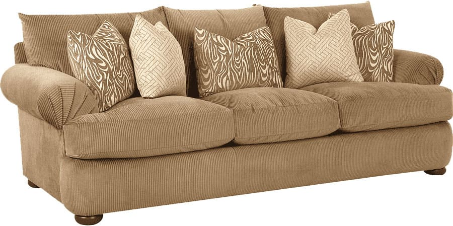 Coverlastic Sofa Cover Review
