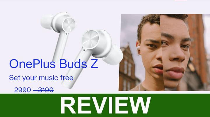 Oneplus Buds Z Review 2020