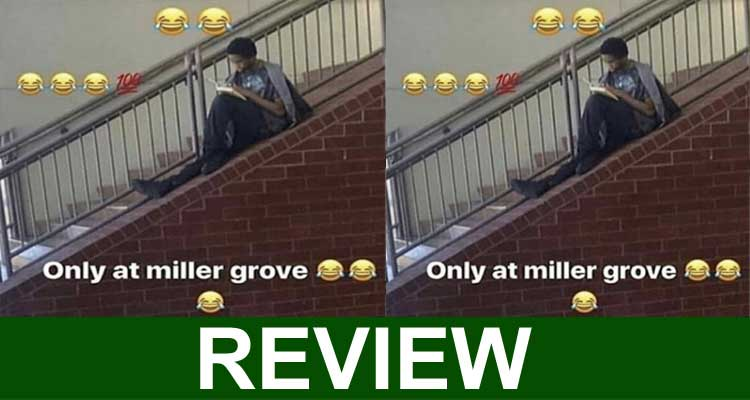 Only at Miller Grove Meme 2020