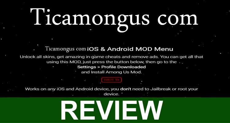 Ticamongus.com Review 2020