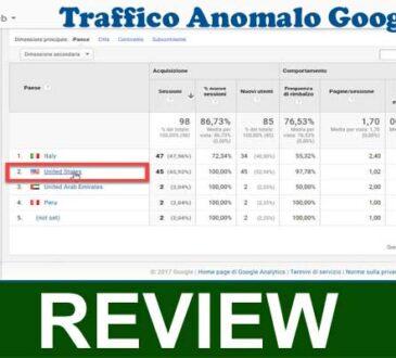 Traffico Anomalo Google 2020