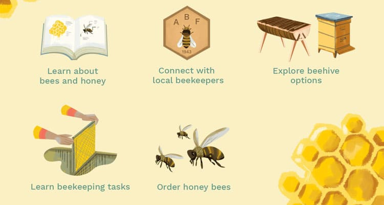 Want to Start Beekeeping 2020