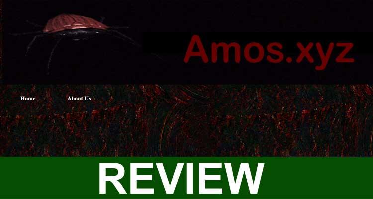 Amos.xyz 2020
