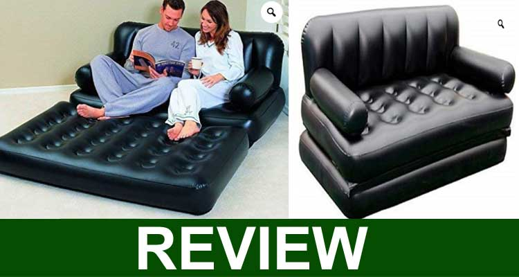 Bean Bag Theory Review