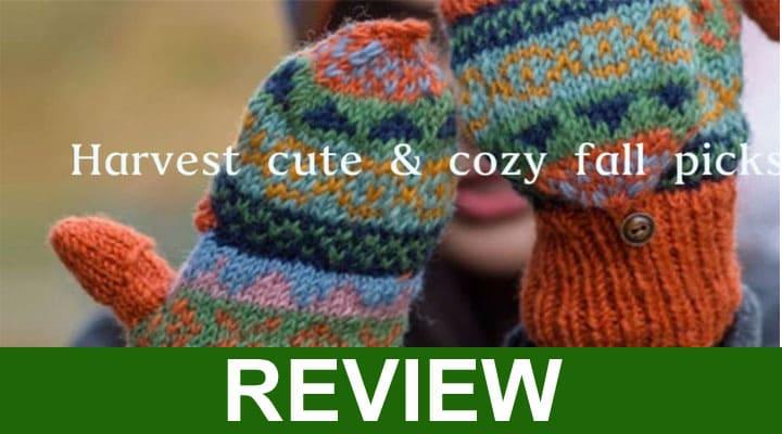 Rebadress Reviews 2020