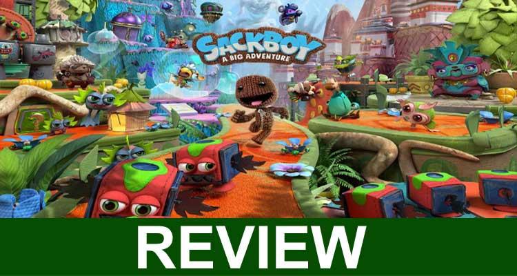 Sackboy a Big Adventure Review 2020