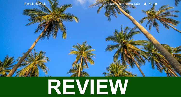 Fallinall Reviews 2020