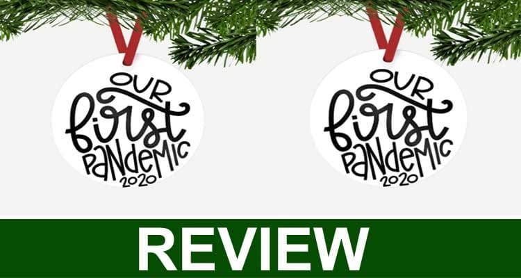 Our First Pandemic Ornament Review 2020