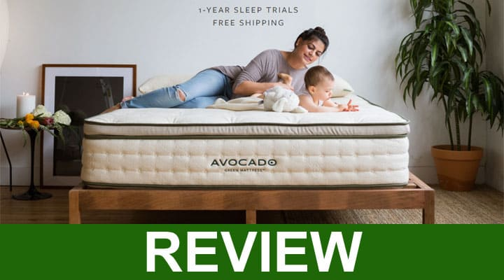 Avocado Green Mattress Reviews 2021
