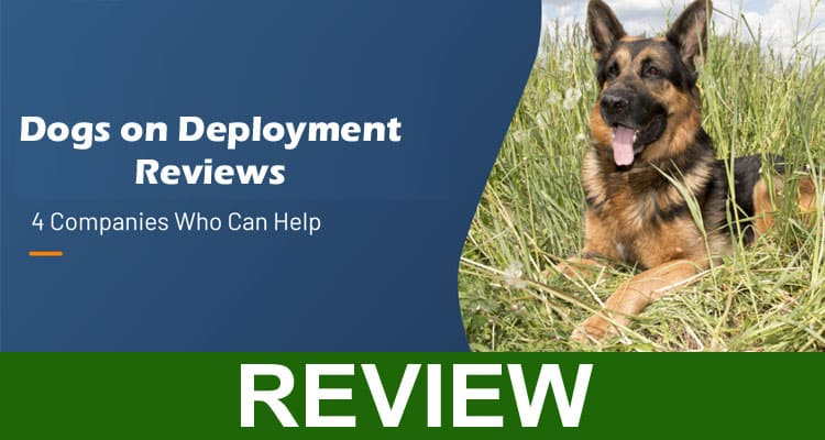 Dogs on Deployment Reviews 2021