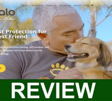 Halo Collar Reviews
