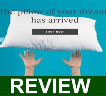 One Fresh Pillow Reviews 2021