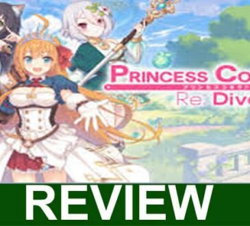 Princess-Connect-Error-100-