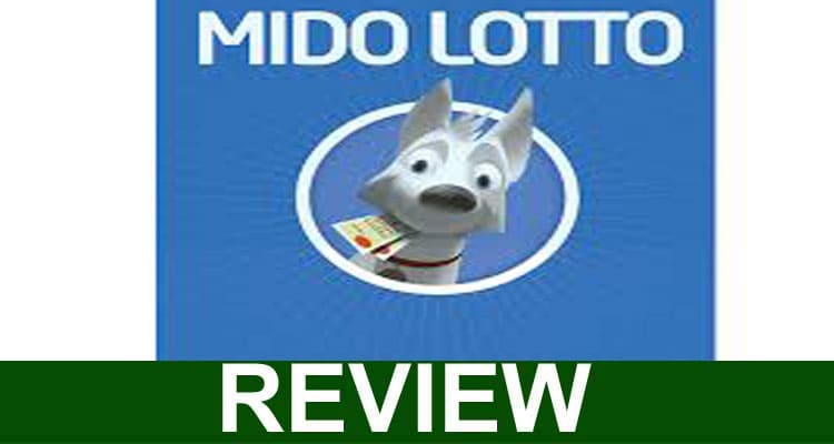 mido-lotto-Review