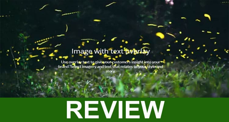 Libipop Review 2021