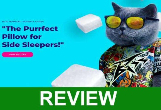 Pillow Cube Reviews 2021.