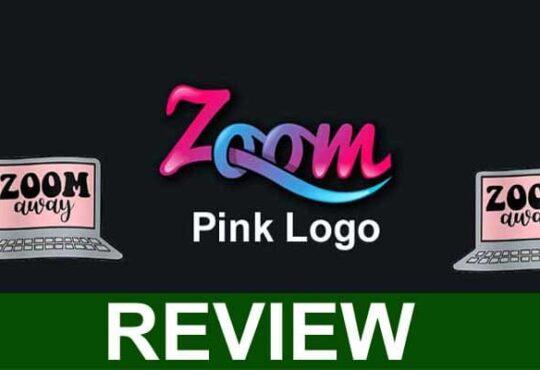 Zoom Pink Logo 2021